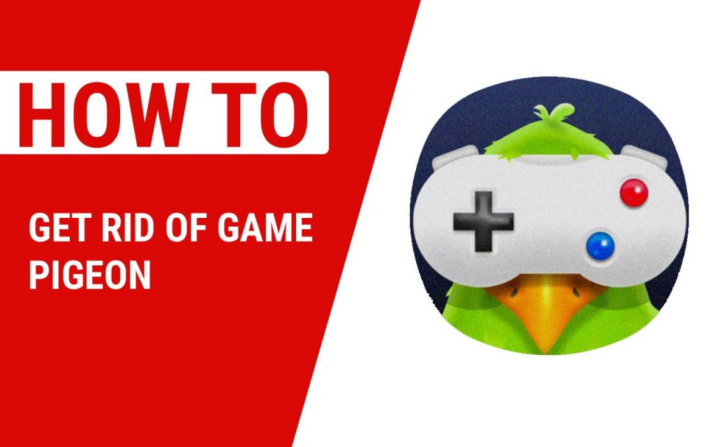 How To Get Rid of Game Pigeon